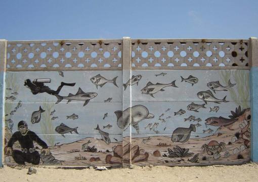 Murales Punta de choros